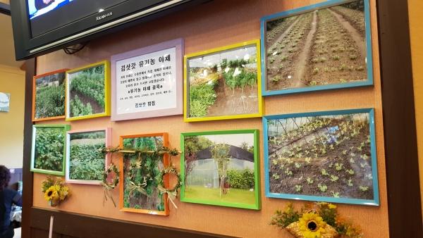 유기농 김삿갓